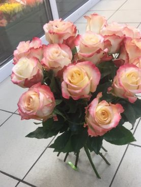 15 роз эквадора 50 см