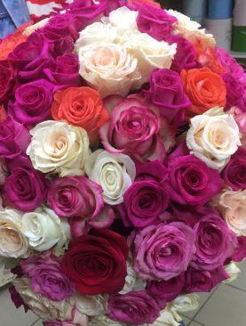 Букет из 101 розы эквадора 50 см