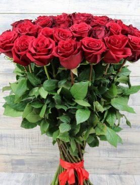 25 роз эксплорер 70 см
