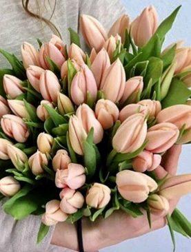 Букет из 45 тюльпанов Персиковый